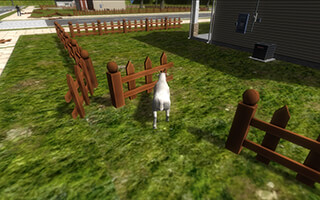 Crazy Goat FREE скриншот 2