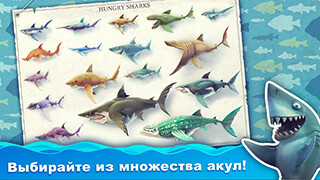 Hungry Shark: World скриншот 4
