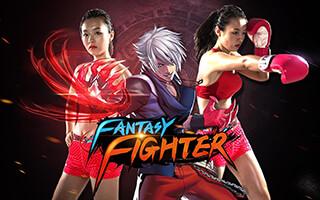 Fantasy Fighter скриншот 1
