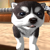 Dog Puppy Simulator 3D иконка