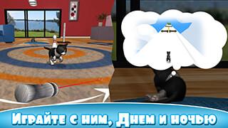Твой виртуальный кот (Daily Kitten: Virtual Cat Pet)
