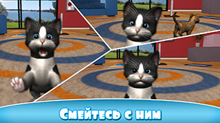 Daily Kitten: Virtual Cat Pet скриншот 4