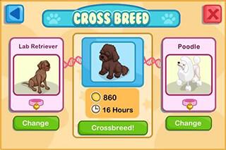 Pet Shop Story скриншот 4