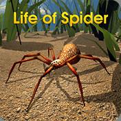 Life of Spider иконка