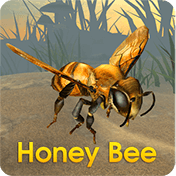 Honey Bee Simulator иконка