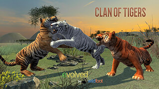 Clan of Tigers скриншот 1