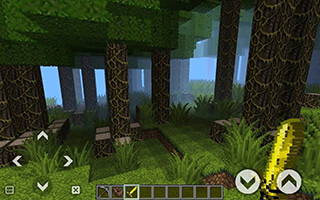 World Craft: Survival скриншот 1