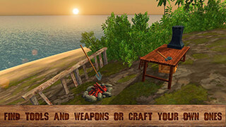 Pirate Island Survival 3D скриншот 4