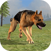 Wild Dog: Survival Simulator иконка