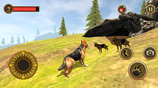 Wild Dog: Survival Simulator скриншот 2