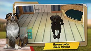 Dog Hotel: My Dog Boarding Lite скриншот 3
