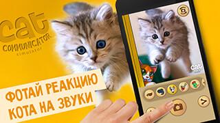 Human - Cat Translator: Joke скриншот 3