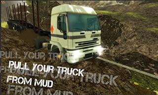 Truck Simulator : Offroad скриншот 3
