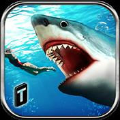 Angry Shark 2016 иконка
