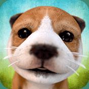 Dog Simulator иконка