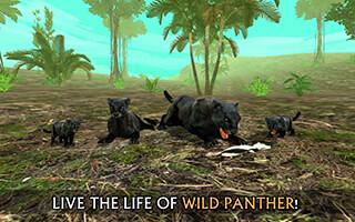 Wild Panther Sim 3D скриншот 1