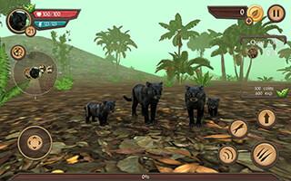 Wild Panther Sim 3D скриншот 4
