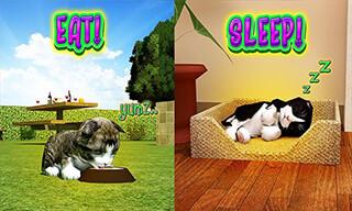 Cat Frenzy 3D скриншот 3