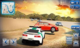 Border Police Adventure Sim 3D скриншот 4