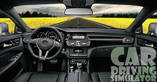 Driving Car Simulator скриншот 1