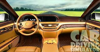 Driving Car Simulator скриншот 2