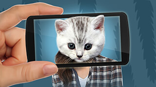 Face scanner: What Cat 2 скриншот 3