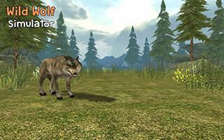 Wild Wolf Simulator 3D скриншот 1