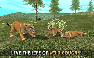 Wild Cougar Sim 3D скриншот 1