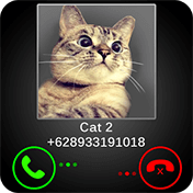 Fake Call Cat Joke иконка