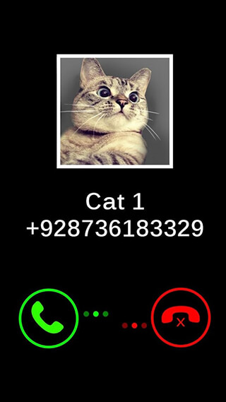 Fake Call Cat Joke скриншот 3