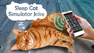 Sleep Cat Simulator Joke скриншот 3