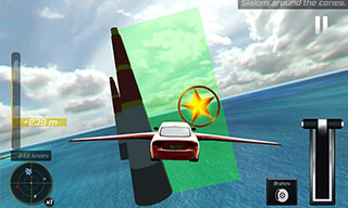 Flying Car Flight Simulator 3D скриншот 2