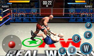 Real Wrestling 3D скриншот 2
