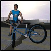 BMX Freestyle Extreme 3D иконка