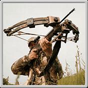Crossbow Shooting Deluxe иконка