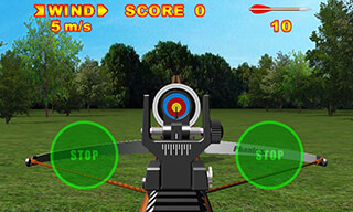 Crossbow Shooting Deluxe скриншот 1