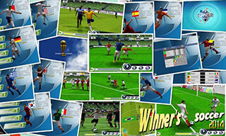 Winner Soccer: Evolution скриншот 1