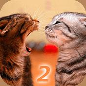 Ask Cat 2: Translator иконка