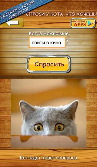 Ask Cat Speak Simulator скриншот 1