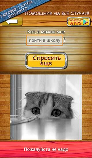 Ask Cat Speak Simulator скриншот 3
