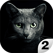 Find A Cat 2: Free иконка