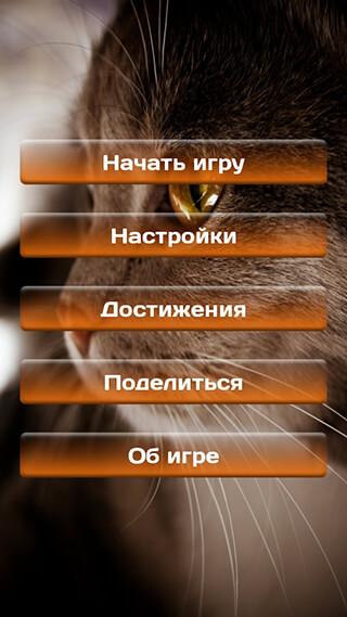 Find A Cat 2: Free скриншот 2