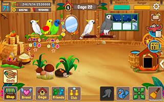 Bird Land Paradise скриншот 3
