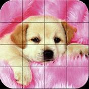 Puzzle: Puppies иконка