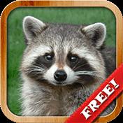 Animals For Kids: Flashcards иконка