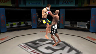 Brothers: Clash Of Fighters скриншот 2