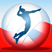 Чемпионат по волейболу 2014 (Volleyball Championship 2014)