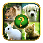 Animals Quiz иконка