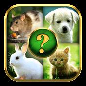 Animals Quiz иконка