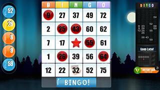 Bingo: Free Bingo Game скриншот 4